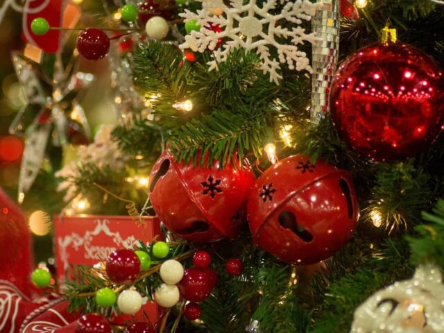 Cesti natalizi on line